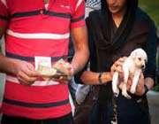 حکم خرید و فروش سگ