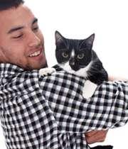 گربه و انسان