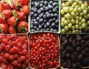 میوه های ریز