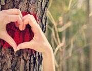 عشق، ازدواج و دیگر هیچ...