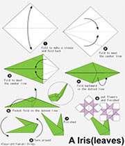 کاردستی، اوریگامی گل نرگس