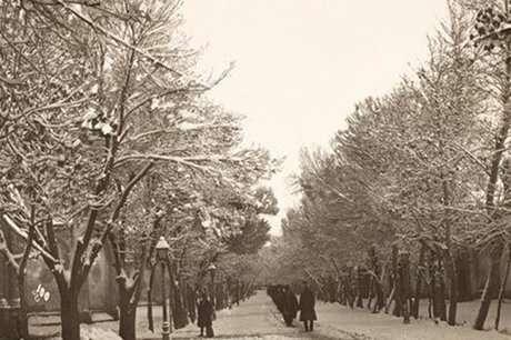 جای خالی برفهای تهران + تصاویر