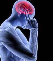 مغزتان را آکبند نگه ندارید