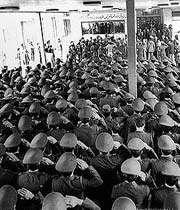 20 بهمن در تاریخ نگارپایداری