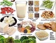 پروتئین گیاهخواران