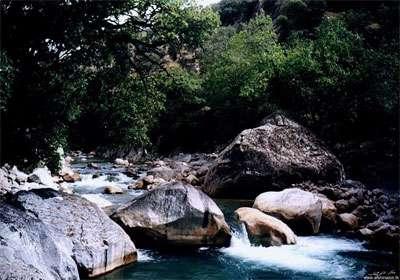 روستای علیشاهی