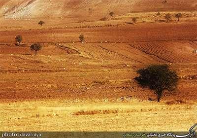 روستای درصوفیان