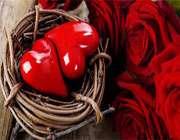 4باید و نباید برای خوشبختی زوج های جوان