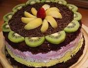 آشنایی با روش تهیه کیک بستنی کاکائویی با میوه