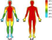 درجه حرارت بدن