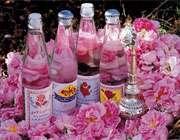 خواص معجزه گر گلاب در طب سنتی