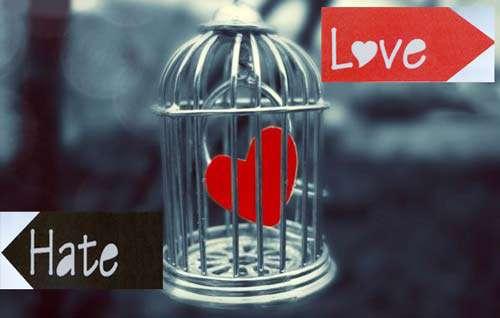 عشق و نفرت