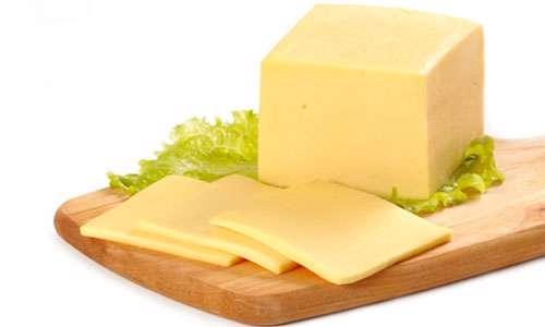 یک واحد پنیر پیتزا شناسی