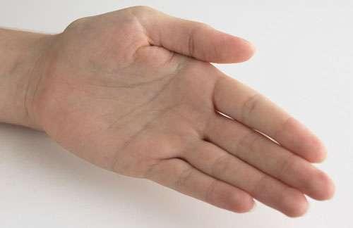 راز شیارهای انگشتان