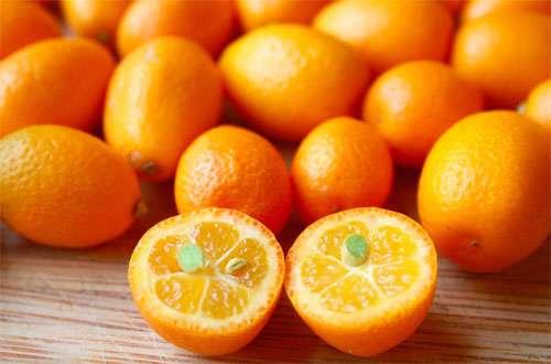 کامکوات؛ این پرتقال های مینیاتوری