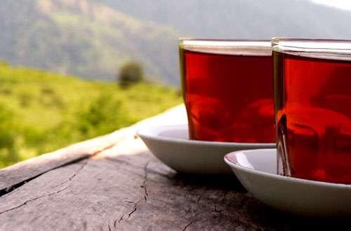 پوکی استخوان: 3 فنجان چای برای کاهش شکستگی