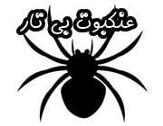 عنکبوت بی تار