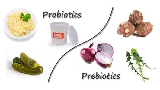 تفاوت پروبیوتیک با پریبیوتیک چیست؟