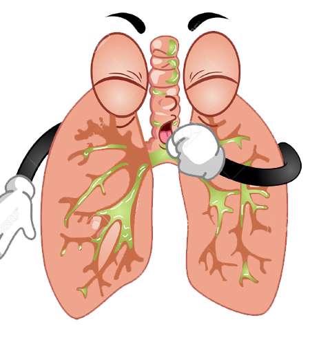 بهترین روش پاکسازی راه تنفسی