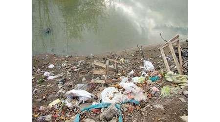 انسان و محیط زیست