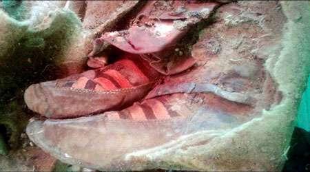 مومیایی 1500 ساله آدیداس پوش