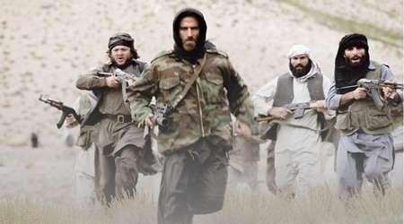 هرآنچه لازم است، درباره طالبان بدانید