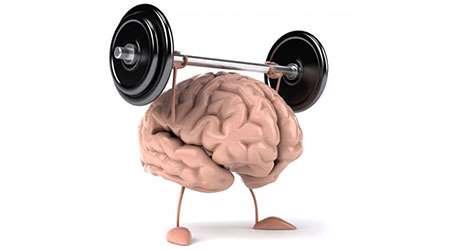 آلفای ذهنی چیه؟