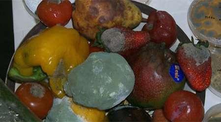 <a href='http://tebyan.niloblog.com/p/374/'>بررسی</a> تأثیر ادویه بر جلوگیری از کپک زدن مواد غذایی