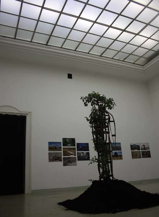 نمایشگاه هنر محیطی مجارستان