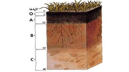 تعیین ظرفیت آب پذیری خاک ها و چگالی خاک ها