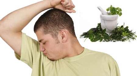 بوی عرق و گیاهان دارویی