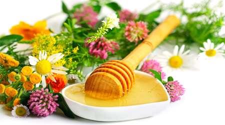 عسل در طب سنتی؛ از سلامت قلب تا تقویت معده