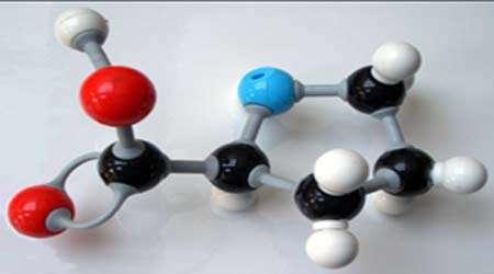 آشنایی با بانك پروتئین، جلسه سوم