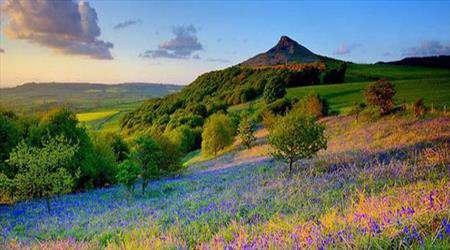 طبیعت، بهار، سرسبزی