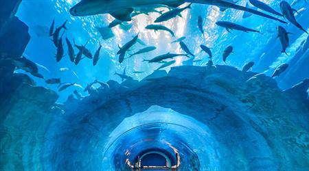 سفر به اقیانوسهای جهان در اصفهان
