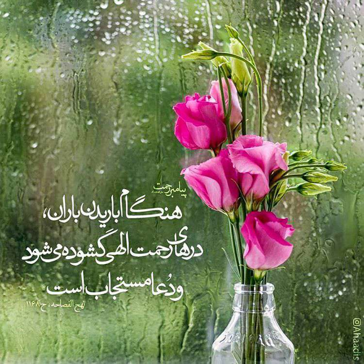 image result for ?احادیث (ص)?‎