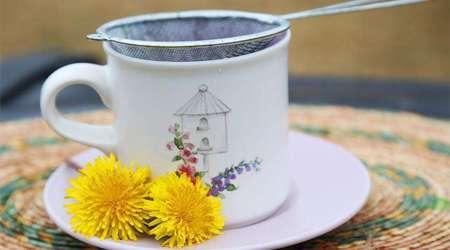 سم زدایی و پیشگیری از سرطان با چای قاصدک