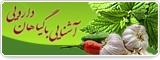 ویژه نامه گیاهان دارویی
