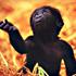 نوزاد ميمون