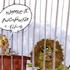 کاریکاتورهای جذاب ورزشی