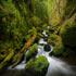 رودخانه هاي زيبا