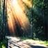 آلبوم هجوم خاطرات-امیر راد-ویژه مشترکین ایرانسل